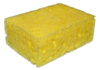 Sponge_on_white_background