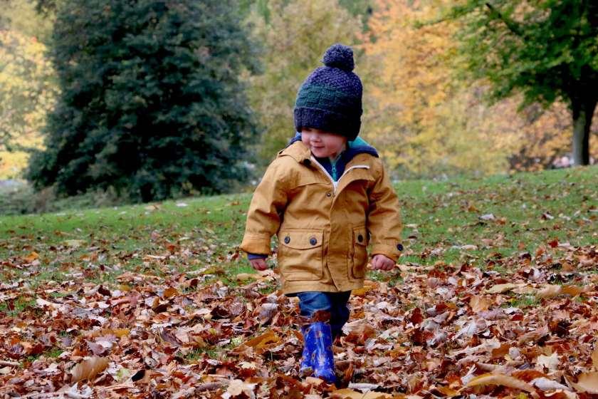 fall baby photo-1445796886651-d31a2c15f3c9