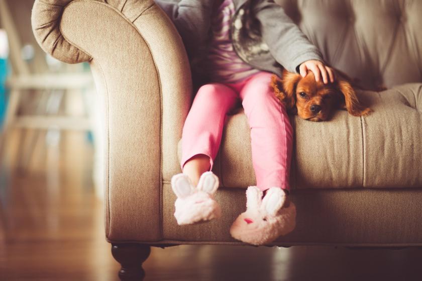 dog-and-kid-photo-1467321309980-a57856cd25f7