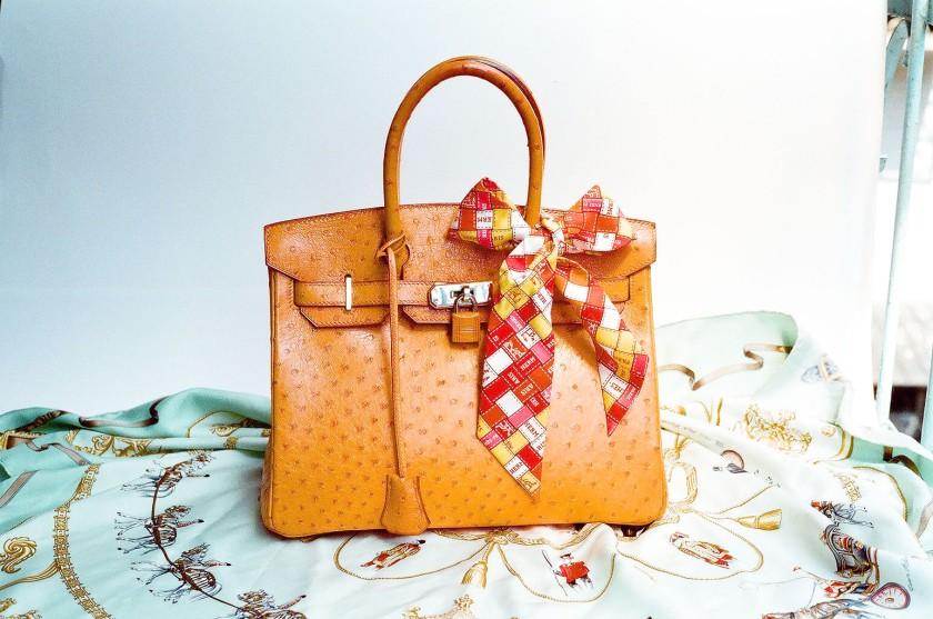 dream bag Hermes_Ostrich_Birkin_Bag.jpg