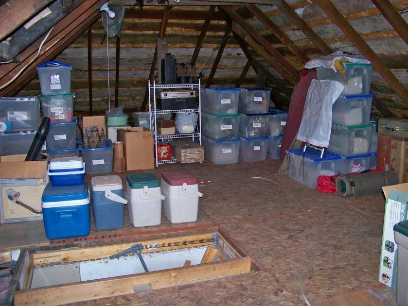 attic_organized_2
